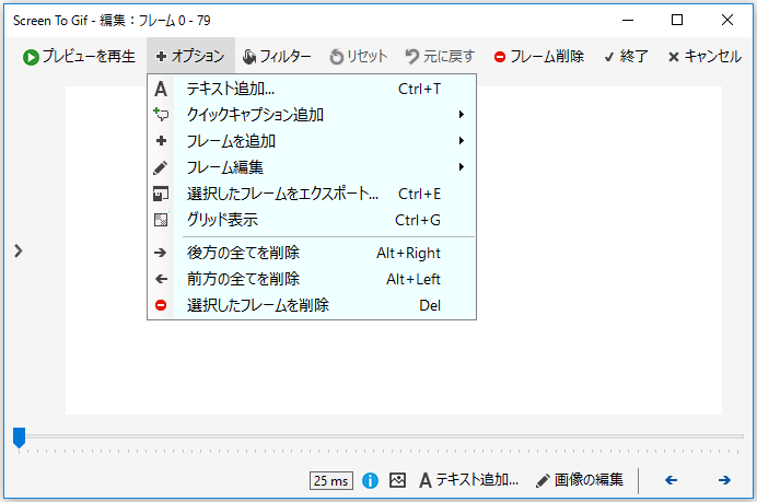 ScreenToGif オプション