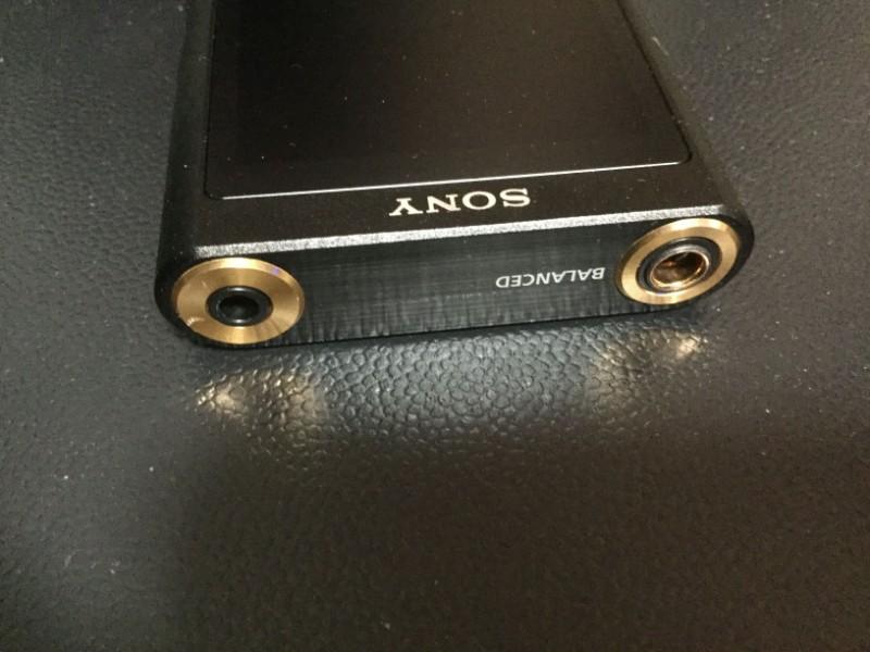 NW-ZX300 バランスケーブルを接続することができる